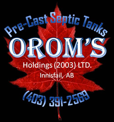 Oroms Holdings 2003